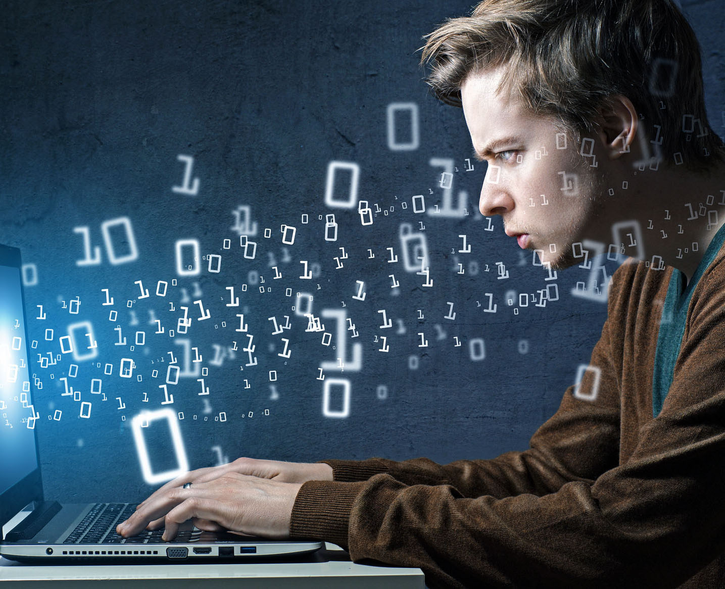 a focus on the career of a software programmer